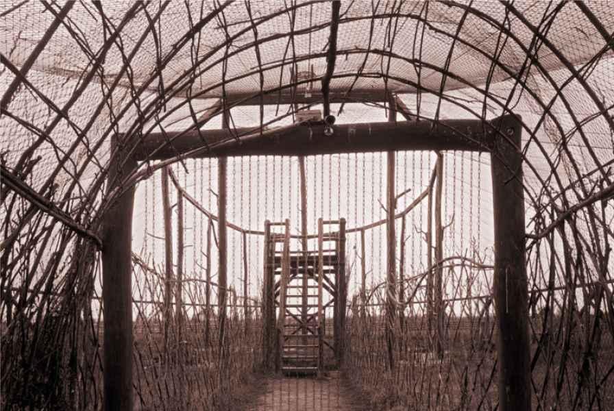 Épületek, építmények és romok Hortobágyon 45. 2008.
