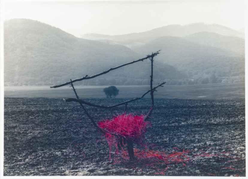 Gally installáció tájban 2. 1994.
